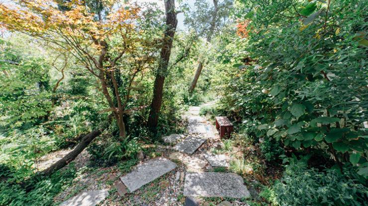 ガーデンからレストランへ続く緑のトンネル。ベンチや小池などフォトスポットが多いのも魅力のひとつ